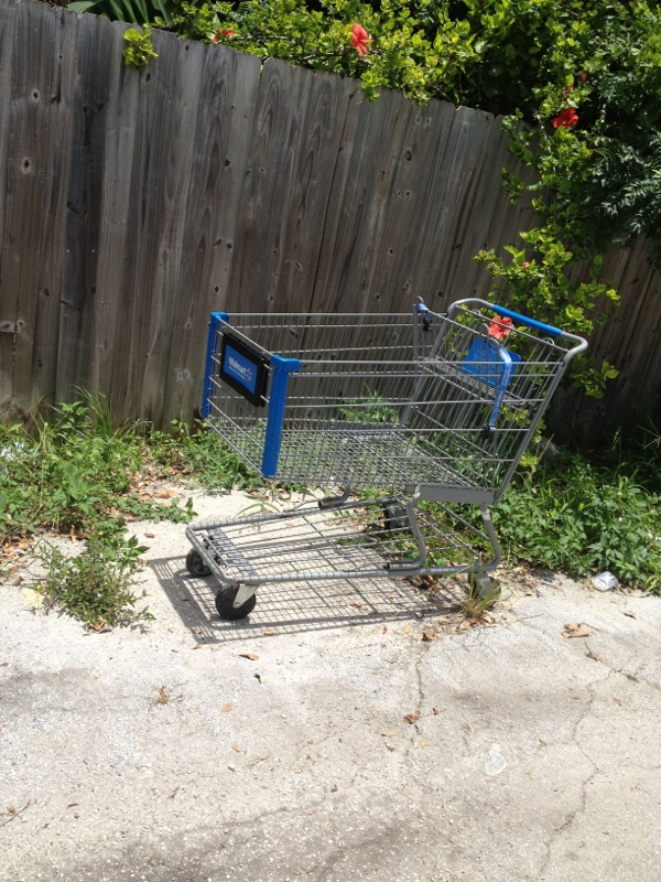 Shopping Carts in North Miami Beach
